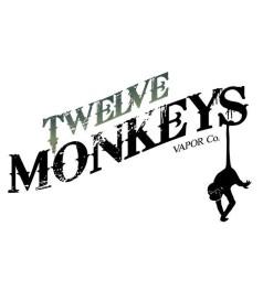 Papio  - Twelve Monkeys Origins