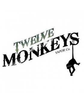 Saimiri - Twelve Monkeys Origins