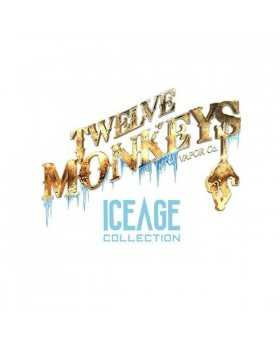 Kanzi Iced Twelve Monkeys Ice Age